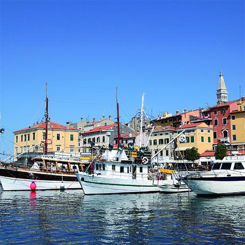 4 Tage Saisonabschluss mit Olivenernte in Kroatien