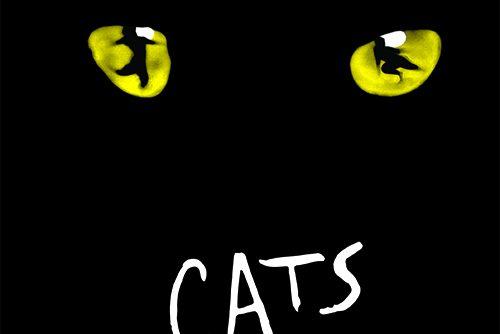 "Musical ""CATS"" im Ronacher Theater"